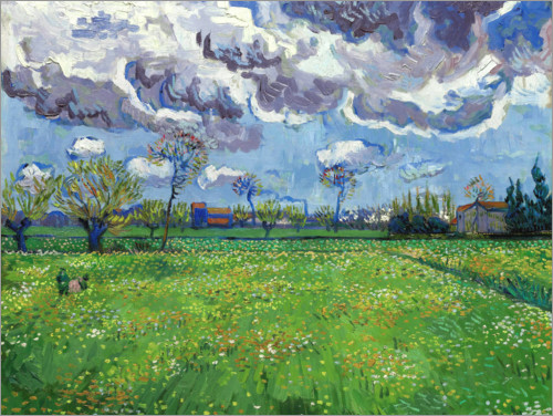 Póster Meadow with flowers and leaden sky
