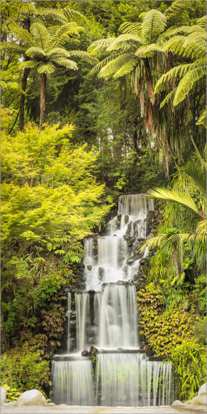 Póster Tropical waterfall in New Zealand