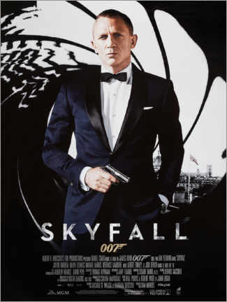 Lienzo  Skyfall - Entertainment Collection