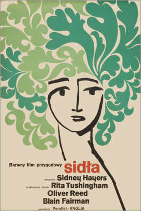 Póster  Sidla - Entertainment Collection