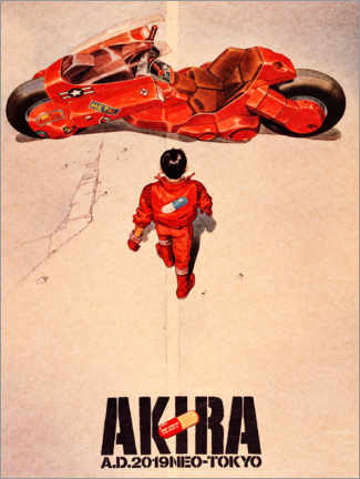 Cuadro de PVC  Akira - Entertainment Collection