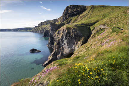Cuadro de madera  Calm bay in Ireland by the sea - The Wandering Soul
