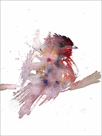 Póster  Robin abstracto - Verbrugge Watercolor
