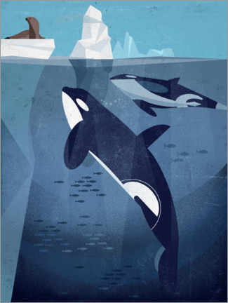 Póster Orca