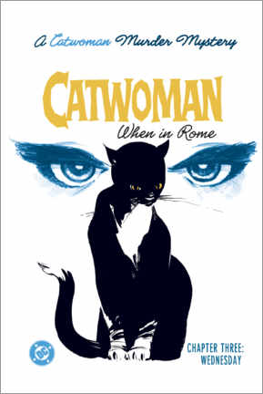 Lienzo  Catwoman Mystery