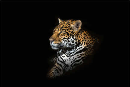 Póster  Retrato de jaguar - Richard Reames