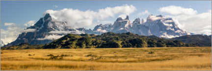 Póster  Andes patagónicos - Torres del Paine - Dieter Meyrl