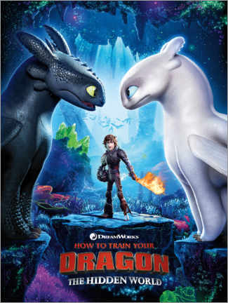 Póster  The Hidden world - Toothless & Light Fury