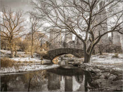 Póster  Central Park New York in winter - Assaf Frank