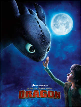 Cuadro de aluminio  How to train your dragon