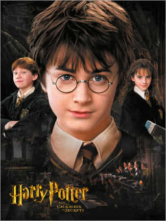 Póster  Harry Potter and the Chamber of Secrets