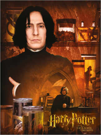 Póster Severus Snape and the Chamber of Secrets