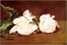 Vinilo para la pared  Branch of White Peonies and Secateurs - Edouard Manet