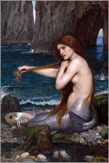 Cuadro de plexi-alu  La sirena - John William Waterhouse