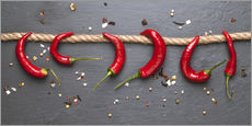 Cuadro de plexi-alu  red hot chilli peppers with spice - pixelliebe