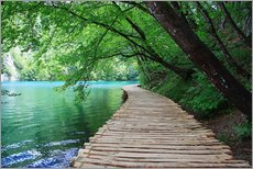 Cuadro de plexi-alu  Plitvice Lakes National Park Boardwalk - Renate Knapp