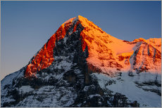 Vinilo para la pared  Eiger mountain peak at sunset  View from Lauberhorn, kleine Scheidegg, Grindelwald, Switzerland - Peter Wey