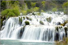 Vinilo para la pared  Krka national park - Alex Robinson