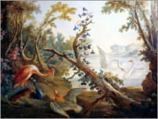 Vinilo para la pared  Lake with swans, a flamingo and a peacock - François Boucher