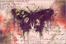 Vinilo para la pared Crazy Butterfly