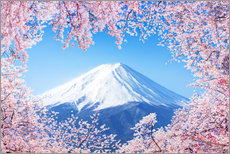 Cuadro de plexi-alu  Mount Fuji in Japan during the cherry blossom in spring - Jan Christopher Becke