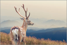 Vinilo para la pared  Deer standing on the mountain
