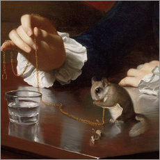 Cuadro de plexi-alu  Boy with a Flying Squirrel (Detail) - John Singleton Copley