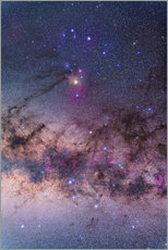 Vinilo para la pared  Scorpius with parts of Lupus and Ara regions of the southern Milky Way. - Alan Dyer