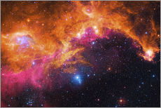 Vinilo para la pared  the seagull nebula - Robert Gendler