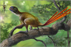 Vinilo para la pared  Epidexipteryx perched on a branch ready to eat a nearby spider. - Sergey Krasovskiy