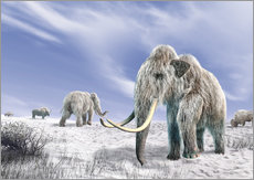 Vinilo para la pared  Two Woolly Mammoths in a snow covered field with a few bison. - Leonello Calvetti