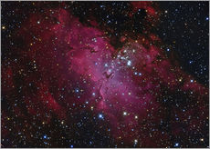 Cuadro de plexi-alu  Messier 16, The Eagle Nebula in Serpens. - Roberto Colombari