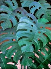 Vinilo para la pared  Monstera Love in Teal and Emerald Green - Micklyn Le Feuvre