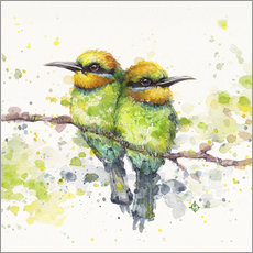 Vinilo para la pared Family (Rainbow Bee Eaters)