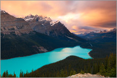 Vinilo para la pared  Peyto Lake at Sunset, Banff National Park, UNESCO World Heritage Site, Rocky Mountains, Alberta, Can - Miles Ertman