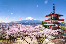 Vinilo para la pared  Chureito Pagoda and Mount Fuji in spring, Fujiyoshida, Japan - Jan Christopher Becke