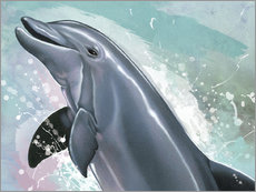 Cuadro de plexi-alu  Bottlenose Dolphin - Ashley Verkamp