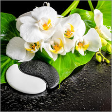 Cuadro de plexi-alu  Spa arrangement with white orchid