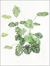 Vinilo para la pared  Monstera - Jennifer McLennan