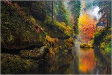 Cuadro de plexi-alu  Kamnitz Gorge in the Saxon Switzerland - Reemt Peters-Hein