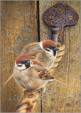 Vinilo para la pared Two sparrows perching on rope by wooden door