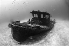 Vinilo para la pared  A tugboat wreck in the Bahamas. - Brook Peterson
