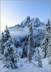Vinilo para la pared  The high peak of Sass De Putia frames the snowy woods at dawn, Passo Delle Erbe, Funes Valley, South - Roberto Moiola