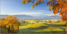 Póster  Autumn in Bavarian with Zugspitze in Background - Murnauer Moos - Dieter Meyrl