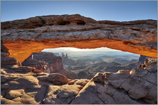 Póster sunrise at Mesa Arch in Canyonlands National Park, Island in the Sky, Moab, Utah, USA, North America