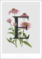 Cuadro de aluminio  E is for Echinacea - Charlotte Day