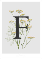 Póster  F is for Fennel - Charlotte Day