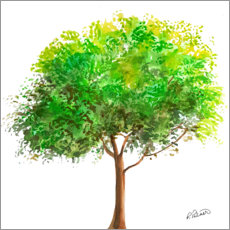 Cuadro de plexi-alu  Simple Green Tree - Ruth Palmer