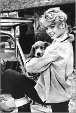 Cuadro de metacrilato  Brigitte Bardot con un perrito - Celebrity Collection
