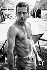 Póster  Paul Newman sin camisa - Celebrity Collection